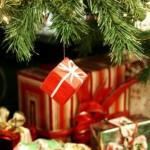 Jacksonville FL Christmas Burglary